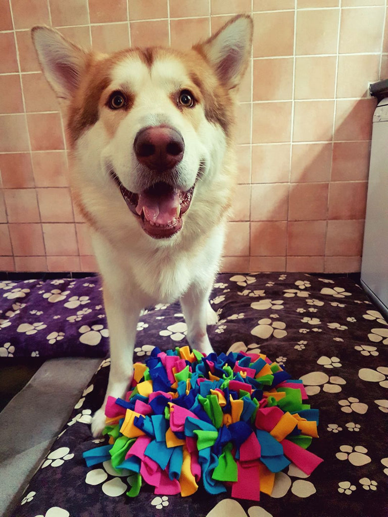 Indiana shows us just how happy she is with her Ruffle Snuffle mat