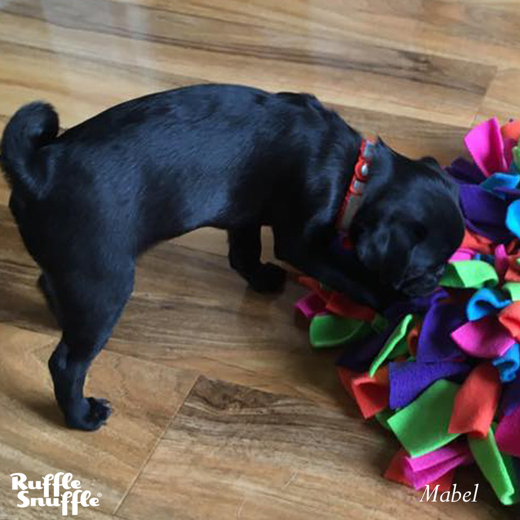 Snuffle mat for Pugs - they love them!