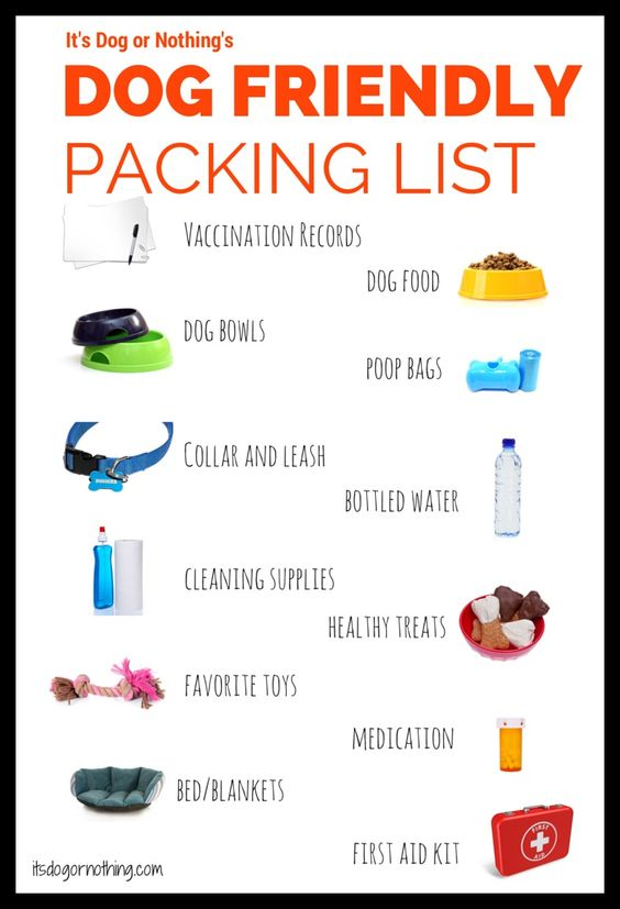 Packing List for dog friendly holiday