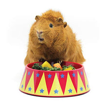 Load image into Gallery viewer, HAYPIGS Starter Set - Guinea Pig Bowl, Tunnel and House