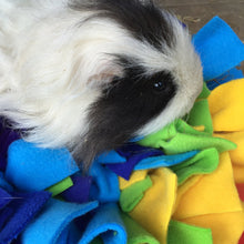 Load image into Gallery viewer, Ruffle Snuffle Poppet - Rainbow - snuffle mat by Ruffle Snuffle