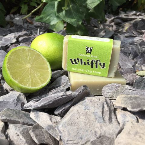 Whiffy natural dog soap - Fresh & Clean - Ruffle Snuffle