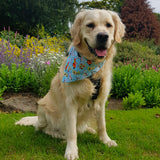 Dog Bandana - Cats & Dogs - snuffle mat by Ruffle Snuffle