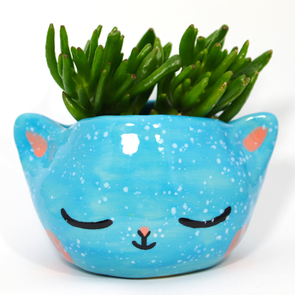 Ceramic Kitty Planter #504 - XL