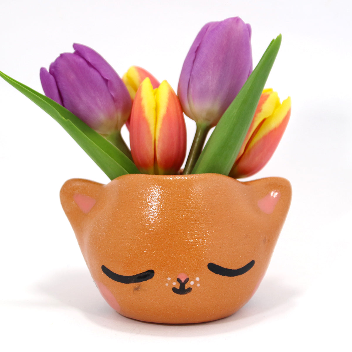 Ceramic Kitty Planter #1434 - XS