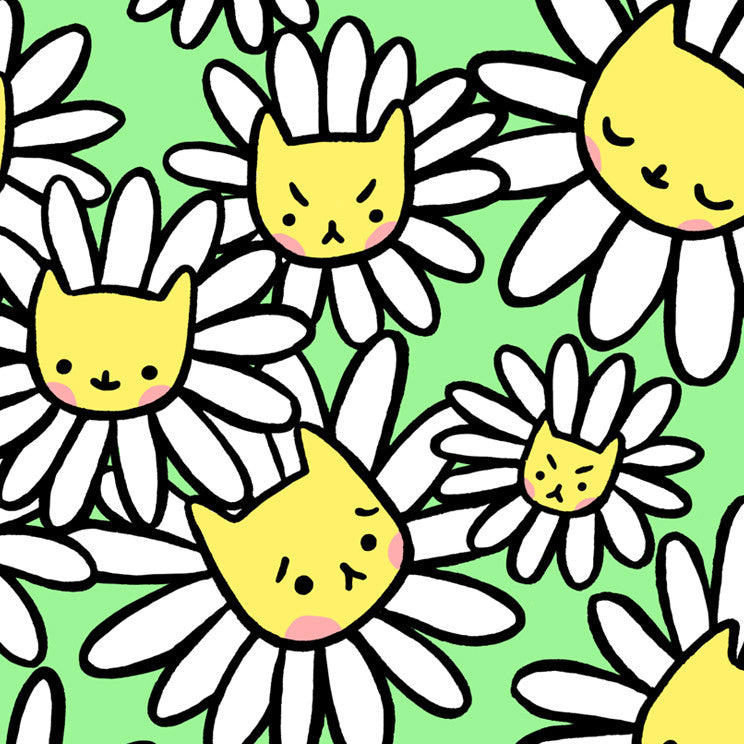 Daisy Kitty Postcard