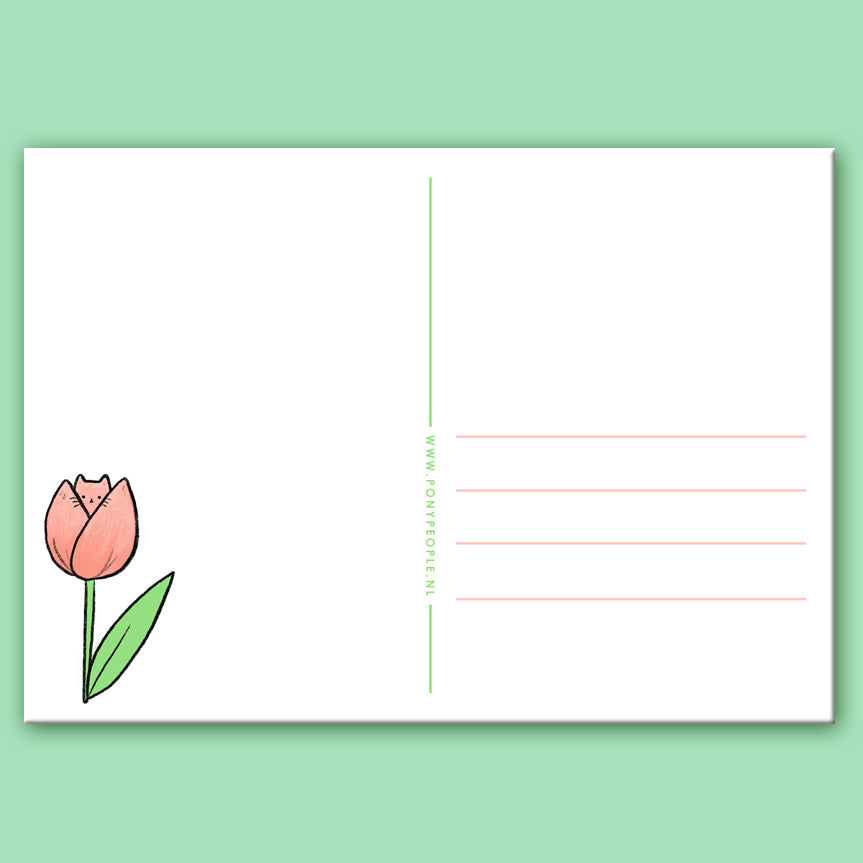 Tulip Kitty Postcard