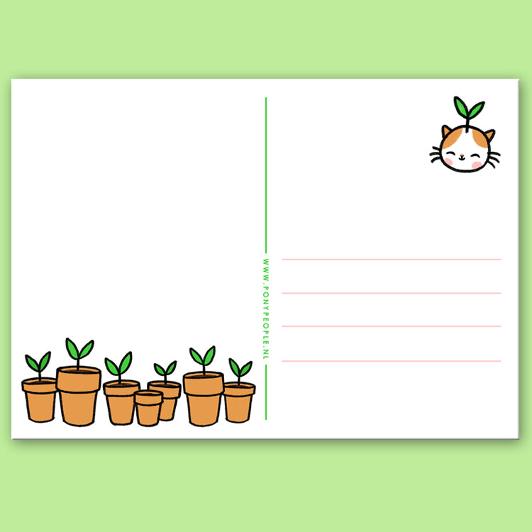 Sprout Kitty Postcard