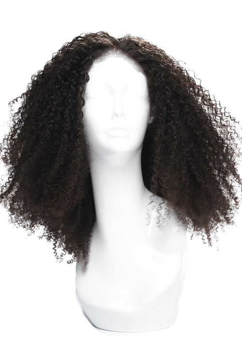Natural Kinky Curly Afro Lace Front Wig