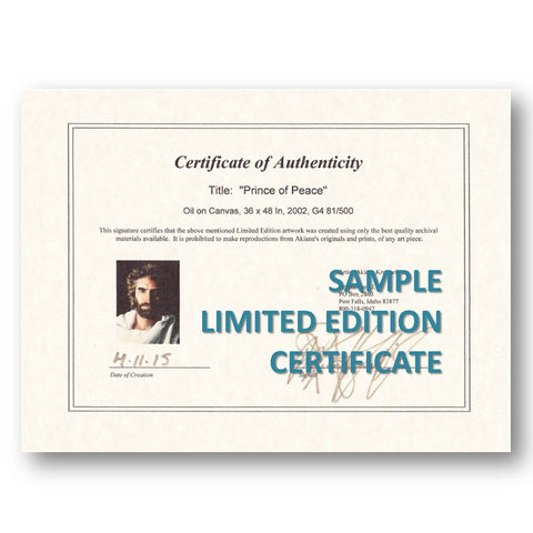 Heaven is for real face of jesus prince of peace akiane kramarik sample limited edition certificate of authenticity yadclub Images