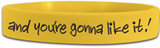 Heaven is for Real - HIFR - Wristband