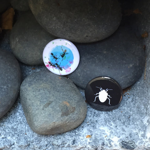 Ants and Beetles Buttons