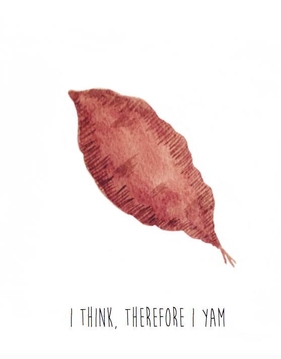 I Think, Therefore I Yam