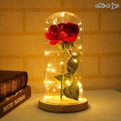 Dreamy Rose Lamp