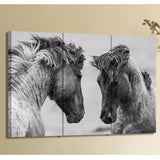 Horse Lovers Canvas