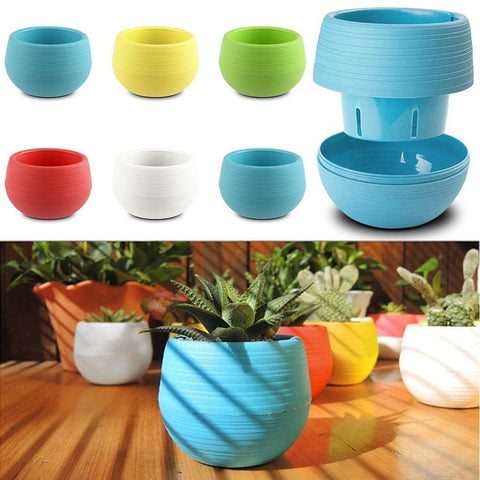 Image of Mini round Shaped Office Decor Flower Seed Planter Pot