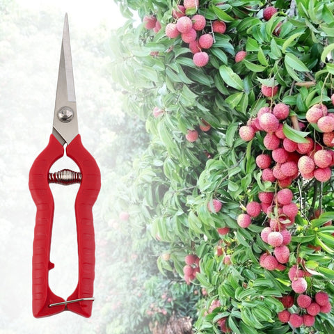 Plant Pruning Scissors - Free Offer - $0.00