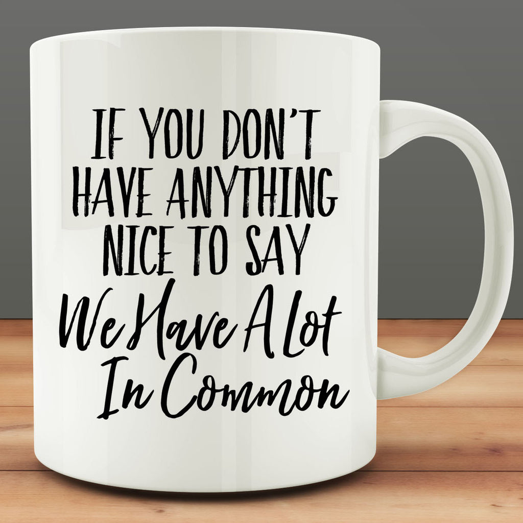 If You Don't Have Something Nice to Say We Have a Lot in Common mug