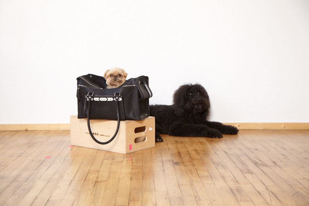 The Louie Pet Carrier-Black/White