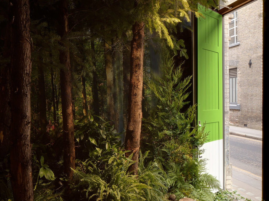 Pantone Colour Of The Year 2017 'Greenery' Inspired Airbnb House