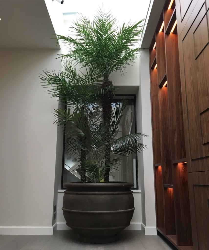 Artificial Tropical Palm Tree Installation