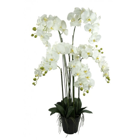 Perfect 115cm Large Faux Potted White Orchid – Artificial Green NE32