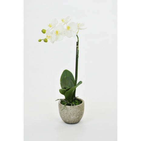 Luxury Artificial Potted White Orchid