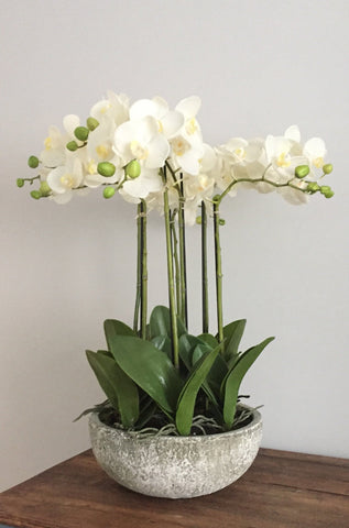 Large 85cm artificial orchid arrangement in stone bowl
