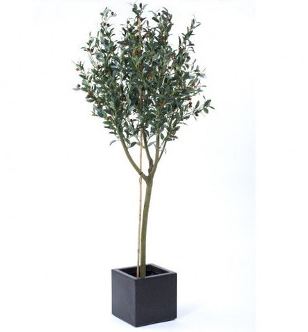 Artificial Olive Tree In Planter