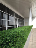 Deluxe Artificial box hedge. Outdoor Hedge Screening.