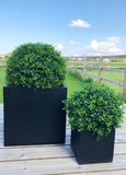 Deluxe Boxwood Ball Planters