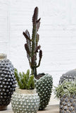 Luxury Faux Cactus - Artificial Green