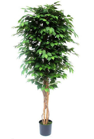 Contract Green Artificial Ficus Tree