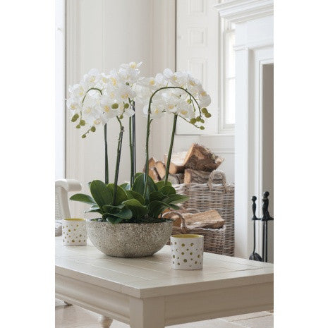Luxury Large Artificial Orchid Arrangement In Pot White