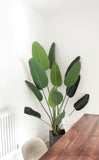 Artificial Strelitzia Bird Of Paradise Plant