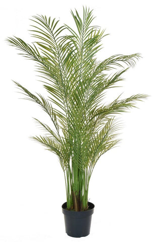 Artificial Areca Palm Tree UV Outdoor and Fire Retardant