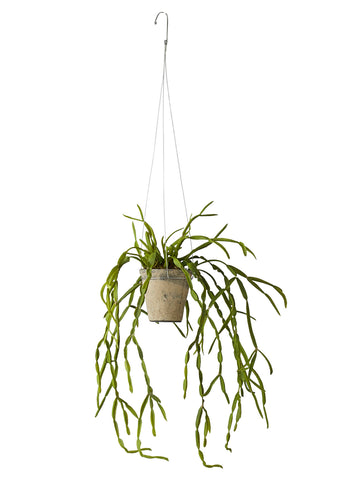Faux trailing succulent in hanging pot by Lene Bjerre