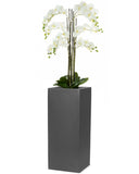 Floor Standing Artificial Orchid In Tall Square Planter 1.8m