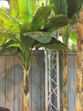 Faux Banana Trees From Artificial Green