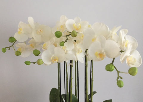 Luxury Large Artificial Orchid Arrangement In Pot White Flowers Artificial Green