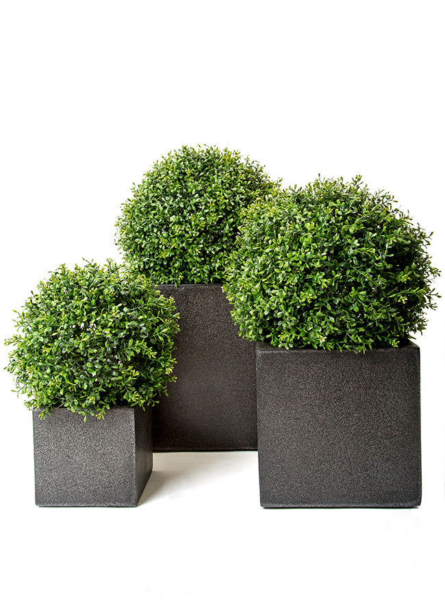 Boxwood Topiary Balls In Pots Artificial Green