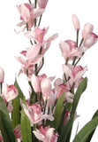 Artificial House Plants - Cymbidium Orchid in Pink