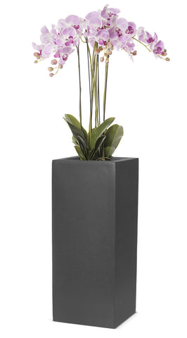 Large Floor Standing Orchid Arrangement In Grey Planter