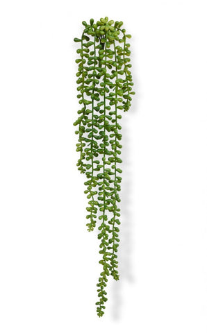 Faux string of pearls plant, Artificial Green