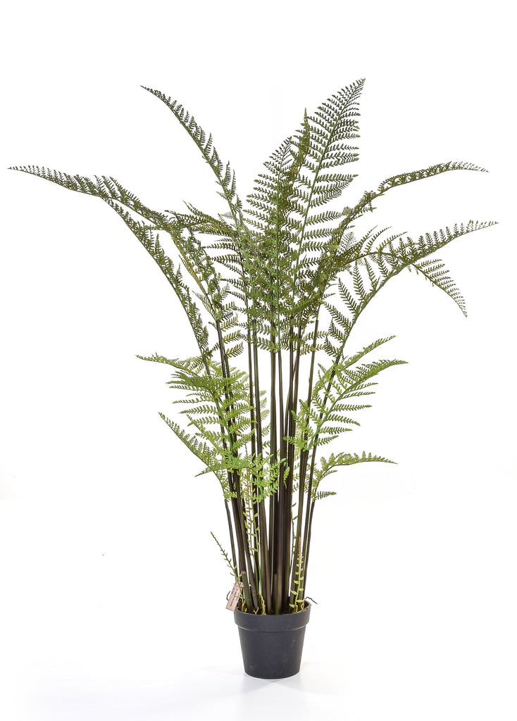 Tall Faux Forest Fern Plant Artificial Green