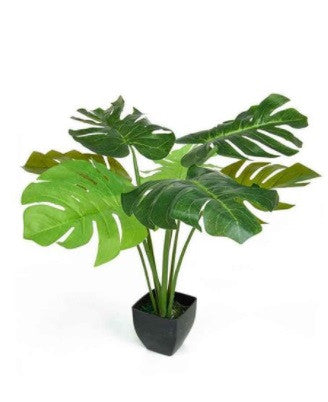 Artificial Monstera Cheese Plant In Pot