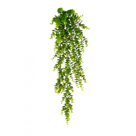 Faux Trailing Mini Leaf Eucalyptus Plant UV
