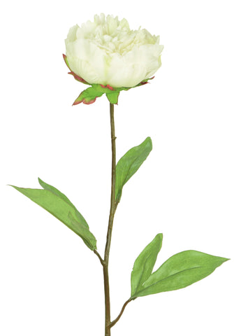 White real touch artificial peony buch of 6 stems