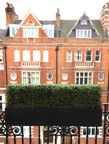 Artificial Boxwood Hedge Window Box