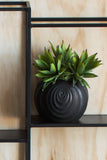 Luxury artificial succulent Plant by Lene Bjerre Design